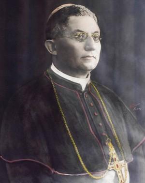 Emanuele Virgilio - Venosa