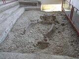 Museo del Paleolitico